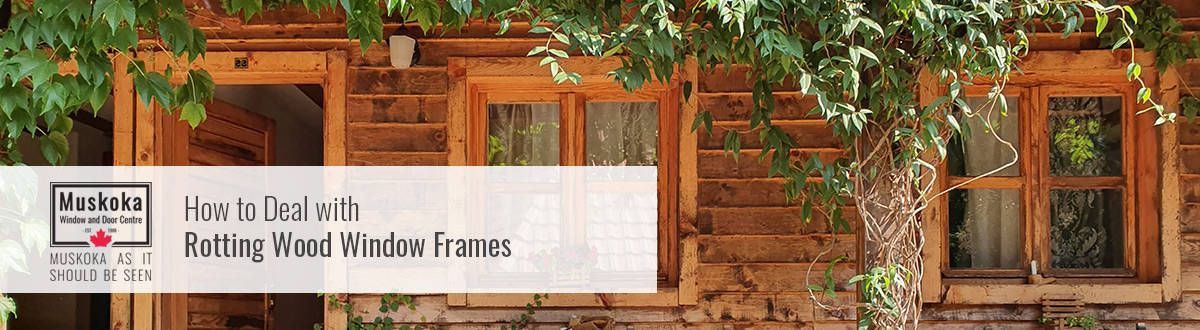 How to deal with rotting wood window frames